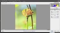 12、Camera RAW基本功:色彩转换为灰度和黑白照片调整技巧