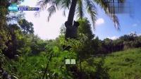金炳万的丛林法则 160708