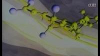 灵芝的功效_吃灵芝的好处_灵芝孢子粉的功效与作用_灵芝达人