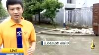 防汛防疫进行时 南京板桥街道:街道社区紧抓消杀工作 160711 新闻360