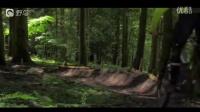 视频: 穿梭在林间的山地车