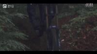 视频: 穿梭在下雪林间的骑士