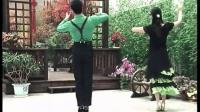 双人对跳交谊舞《规范快三》教学