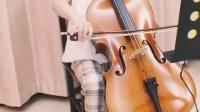 大提琴《铃木》#五月之歌