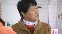 百家碎戏 不一样的婆媳   - 陕西网络广播电视台_标清