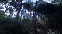 三清山徒步露营之旅