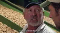 搞笑节目视频:你吃的鸭和鹅是这样的!