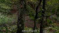 荒野求生秘技第6季
