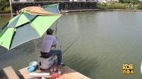 02欢乐钓鱼人-山塘钓青找底,鱼群到底在哪?