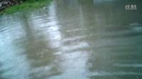 IMAG1008。求救。未来,20年憾见的大到暴雨。把我们这一块都淹了家里近水了。没有下水道。苦啊,求救呀,