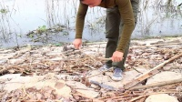 洪涝废弃物制作捕鸟机关
