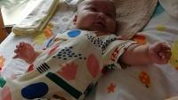 两个月大宝宝和妈妈吵架