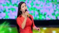 视频: 越南歌曲:花瓶上的紫花 Hoa Tím Lục Bình 演唱:杨红鸾 Dương Hồng Loan
