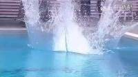 菲律宾跳水比赛奇葩一幕 连续两人0分见过吗-20150615凤凰视频-凤凰视频-最具媒体品质的综合视