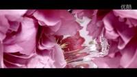 Gucci Flora Fragrance Anniversary Edition(古奇花之舞周年限量香水广告)