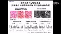 2型糖尿病中西医结合治疗的循证研究 徐春