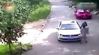 3D:北京老虎咬死游客调查结果—非安全责任事故