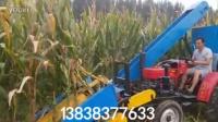 玉米收割机 小型玉米收割机 玉米收割机厂家