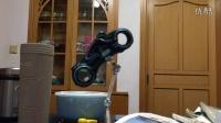 上海迪士尼创极速光轮纪念品(磁贴)