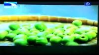 【四季优美】随便果 宣传视频湖北卫视 胖胖妹大总代