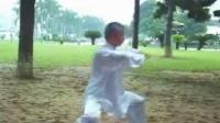 陈式太极拳二十式-朱文忠2008_高清在线观看_百度视频_3