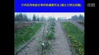 第2讲果园土壤的健康状况如何影响中国的苹果果农