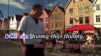 视频: karaoke Tình Ấm Chiều Quê Dương Hồng Loan - Vui_La9