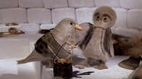 #定格动画#Owl and the Raven_ An Eskimo Legend - Animation and Cartoon Videos