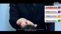 鼎尊国际集团企业宣传片