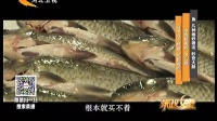 鱼 几种绝妙做法 秒变大厨 160903
