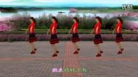 精美音乐广场舞八步《南泥湾》