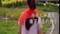 石家庄总代视频
