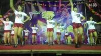 吴川市振文罗里舞蹈队参加麦屋新村交流晚会《天下的姐妹》