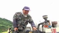 搞笑节目视频:稻子丰收成绝美秋景