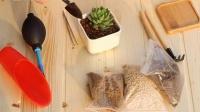 多肉植物种植说明-新手教程视频