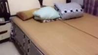 Cici 老师示范视频,家长们记得给宝贝磨耳朵完成家作哦!戴眼镜Cici 是不是很可爱呀!
