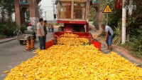 新型玉米脱粒机