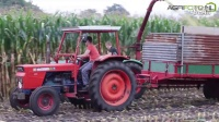 经典的玉米收割机