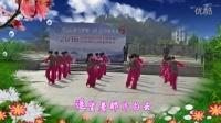 遂昌汤公园·秋之韵广场舞《等待你的爱》2016-14(总382)