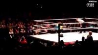 WWE2016芝加哥现场秀  毒蛇兰迪奥顿vs野兽布洛克莱