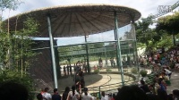 惠东·永记Zoo