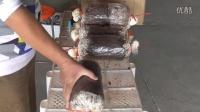 猴头菇种植视频