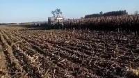 冀新穗茎兼收玉米收割机