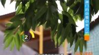 葡式蛋挞超诱人 到澳门必吃排队等 四海漫游 2016 北京城门边上的美食 161008 澳门花样美食中西合璧