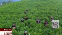 国安社区:精准扶贫  黔茶进京 北京您早 161021