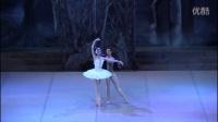 古巴国家芭蕾舞团 天鹅湖 二幕 Estheysis Menendez & Dani Hernandez