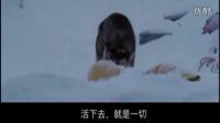 广州得赛网站建设公司-狼团队企业宣传视频