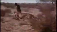 两人徒手在非洲豹口下抢猎物,命运的结果