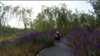 北京市顺义区樱花园骑行队快乐骑行东郊湿地公园-大邵摄