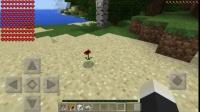 凌风:我的世界PE版修改addons教程⑥:修改玩家的血量和攻击力!最后还有一个彩蛋!!